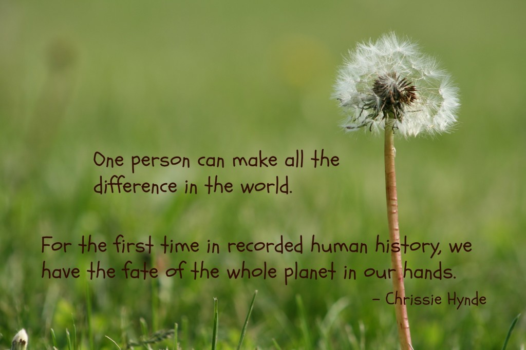 eco-friendly-quote-Hynde-1024x682